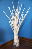White sticks on glass vase Royalty Free Stock Image