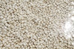 White stone. White pebbles on crystal clear water Royalty Free Stock Images