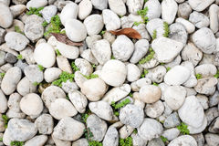 White stone royalty free stock photography
