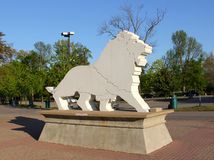 White Stone Lion Statue Stock Images