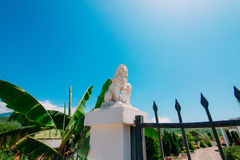 White stone lion statues on the pillars at the gate. Gate holida. Y villa in the mountains of Montenegro stock photography