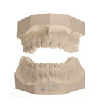 White stone models of teeth Royalty Free Stock Photography