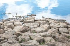 White stone  near the water Royalty Free Stock Photos