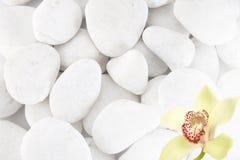White stones Stock Photography