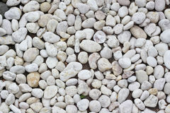 White stones and pebble background. Stone, garden, nature forest, surface abstract background bark brown closeup environment history leaf lumber natural old Royalty Free Stock Photos
