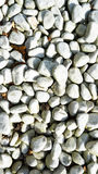 White stones with smooth surface. In a garden Stock Images