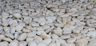 White stones texture. Garden decor Stock Photo