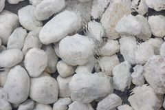 White stones underwater Royalty Free Stock Image
