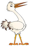 White stork Stock Images