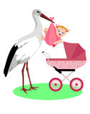 White stork and baby. Royalty Free Stock Photo