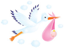 White stork delivers a newborn to his parents. Isolated clip-art (over white) of a flying stork delivers a newborn lying in a pink bag to his parents Stock Photo
