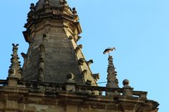 Stork in church of the sixteenth century in Briñas. Spain stock photos