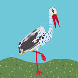 White stork standing on a meadow Stock Image