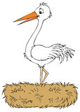 White stork (vector clip-art) Stock Photos