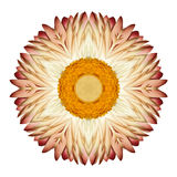 White Straw Mandala Flower Kaleidoscopic Isolated on White Royalty Free Stock Image