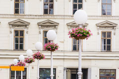 White Street Lamps with hanging  Baskets with pink geraniums Stock Photography