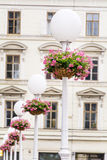 White Street Lamps with hanging  Baskets with pink geraniums Royalty Free Stock Images