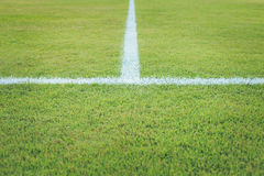 White stripe on grass Royalty Free Stock Photo