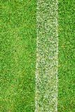 White stripe on the green grass Royalty Free Stock Images