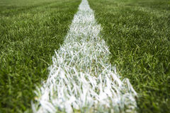 White stripe on the green grass, football and soccer stadium Royalty Free Stock Photos