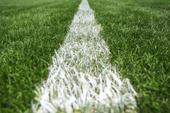 White stripe on the green grass, football and soccer stadium Royalty Free Stock Photo