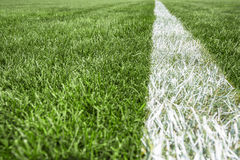 White stripe on the green grass, Football Stadium Royalty Free Stock Photo