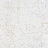 White stucco wall - background or texture. Old white stucco wall - background or texture Stock Image