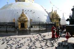White stupa Stock Photography