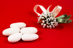 White sugared almonds Royalty Free Stock Image