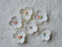 White sugary flowers. On white coconut shavings Royalty Free Stock Photos