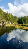 White summer clouds reflecting on the forest pond portrait Stock Image