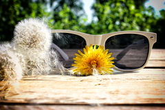 White sunglasses Royalty Free Stock Photography
