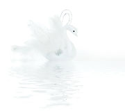 White swan decoration Stock Photography