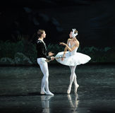 The White Swan and the prince in the water first met-ballet Swan Lake Stock Photo