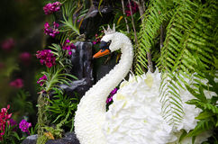 The White Swan Queens was invented by flowers. Royalty Free Stock Photography