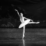 The white swan in the water-The second act evening Lakeside-ballet Swan Lake Royalty Free Stock Photo