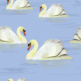 White swan in the water. Vector illustration of watercolor white swan in the water. Seamless pattern Royalty Free Stock Photos