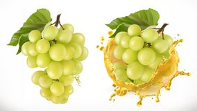 White sweet grapes and juice splash. Vector icon. White sweet grapes and juice splash. Fresh fruit, 3d vector icon Royalty Free Stock Images