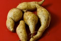 White sweet potato protein food on red background stock images