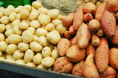 White and sweet potatoes Stock Image