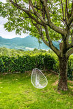 White swing hanging on a tree. In the backyard royalty free stock images