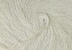 White Swirl Cow Hair Background. A piece of hide with white hair for a background or detail use Stock Photography