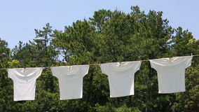 White t-shirts hanging to dry stock video
