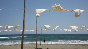White t-shirts hanging to dry stock footage