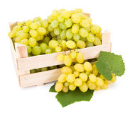 White table grapes (Vitis) in wooden crate Royalty Free Stock Image