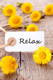 White Tag with Relax. White Tag with the Word Relax on it and many yellow Flowers Royalty Free Stock Photo