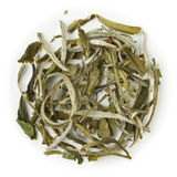 White Tea China Special Snow Buds 22567 Royalty Free Stock Photo
