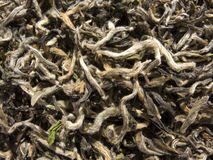 White tea - chinese Bai Cha Royalty Free Stock Photo
