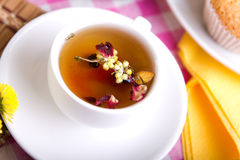 White tea cup with close-up Stock Photos