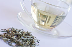 White Tea in transparent cup stock photo